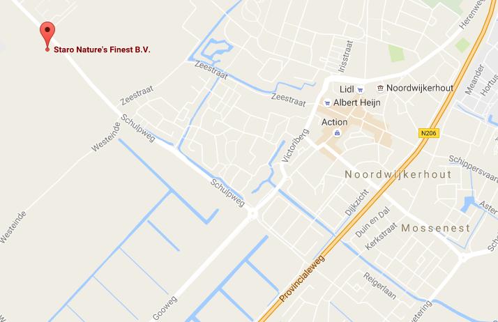 Google Map to Staro