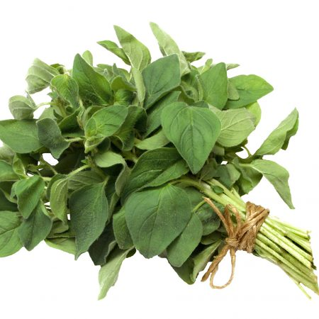 oregano-bunch